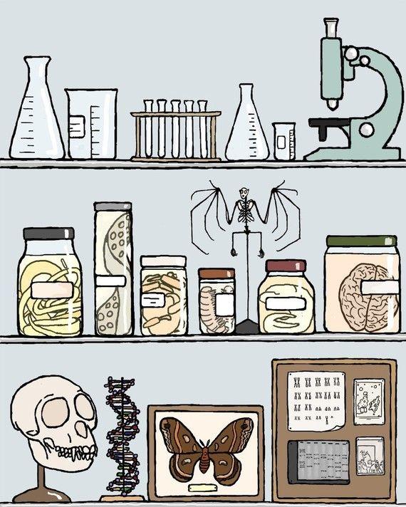science art print 11x14 Ars moriendi by doodleandhoob on Etsy, $30.00