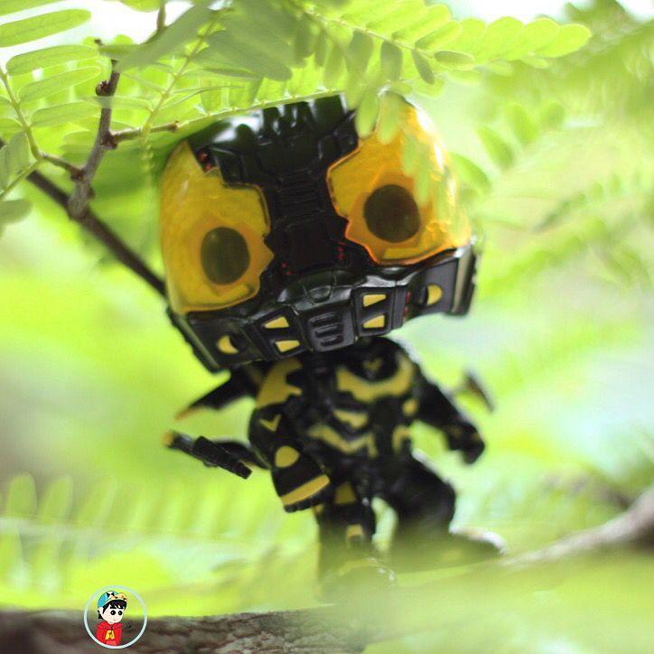 Hello YellowJacket !!