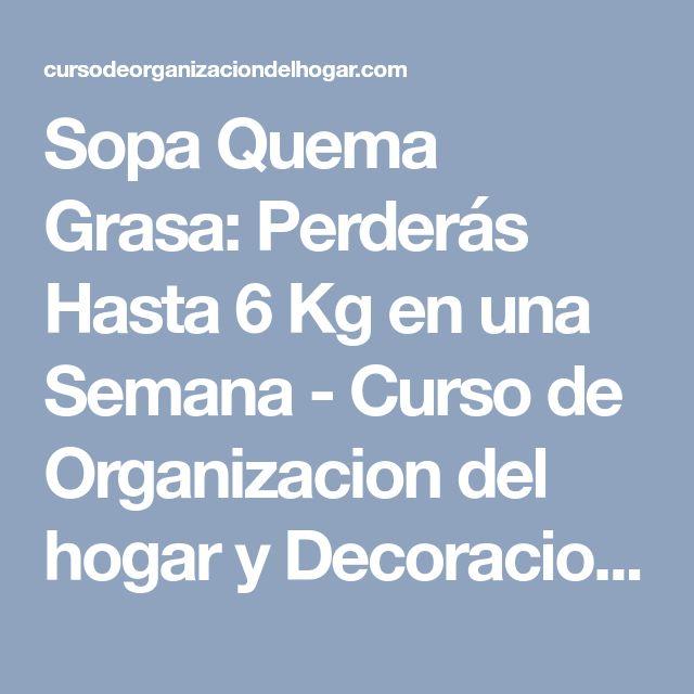 Sopa Quema Grasa: Perderás Hasta 6 Kg en una Semana - Curso de Organizacion del hogar y Decoracion de Interiores