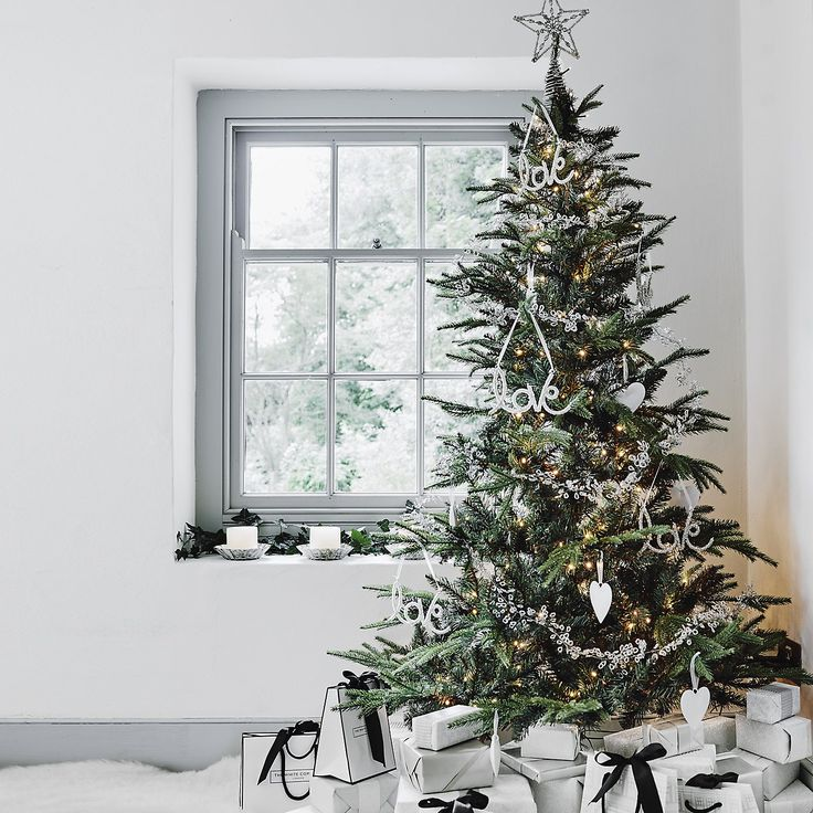 Fir Christmas Tree - 5.5ft | The White Company