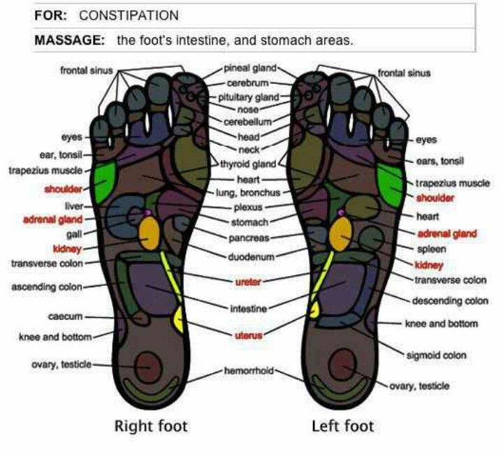 35 Best Images About All About Acupressure On Pinterest