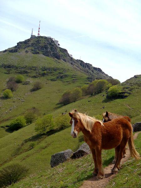La Rhune - Office du Tourisme d'Urrugne - Pays Basque