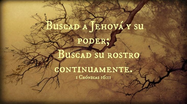 Bible Verses About Love In Spanish : ... Bible #verses #Bibleverses Inspiration Pinterest Spanish, Bible