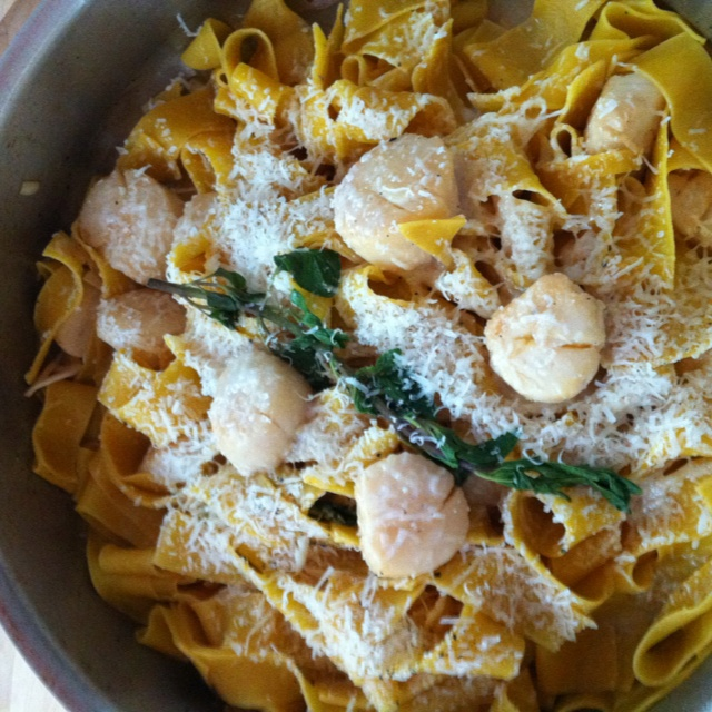Papardelle with pan seared scallops in lemon herb sauce and topped off ...