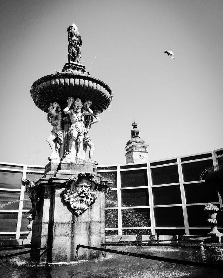 Vnímáne Samsonovu kašnu #vnimani #sculpture #fountain #art #history #grayscale