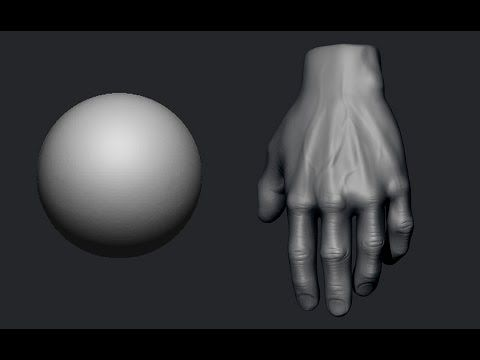 In this tutorial you will learn to sculpt the most important hand parts. En este tutorial vamos a aprender a esculpir las partes más importantes de la mano.