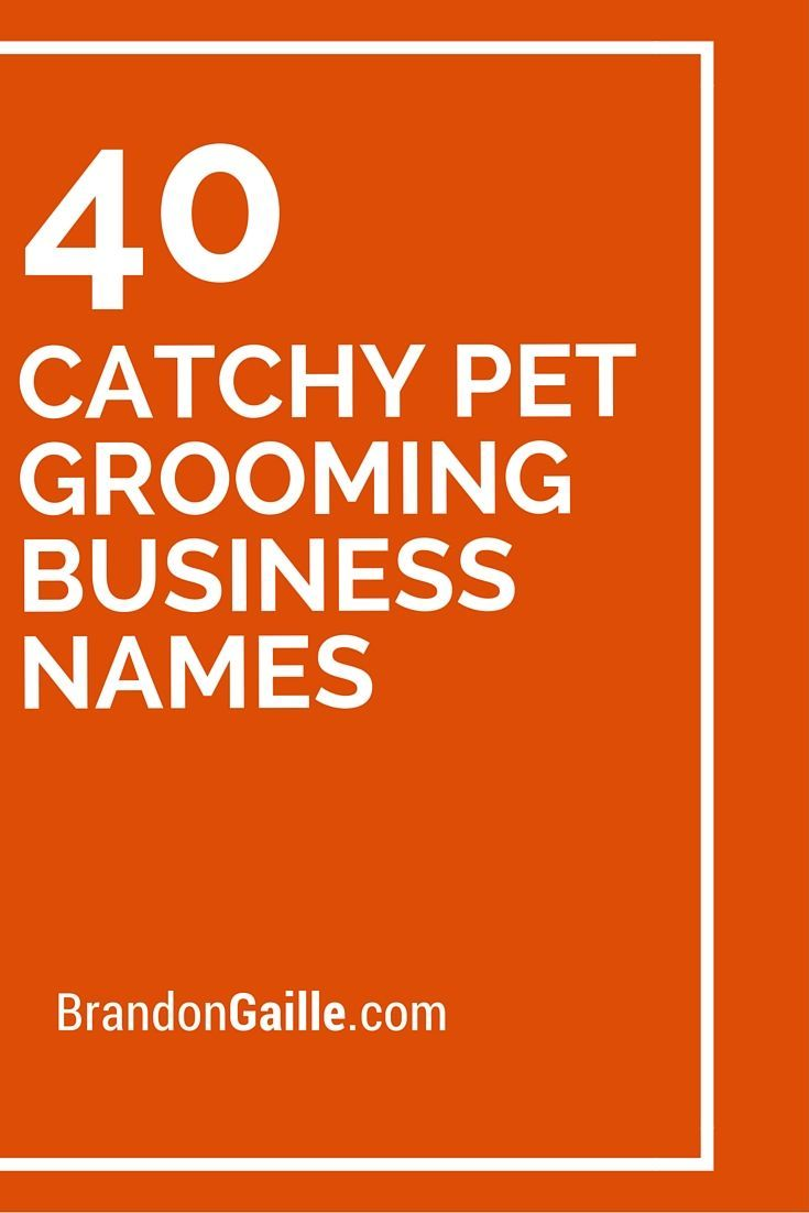 Dog Training Business Names