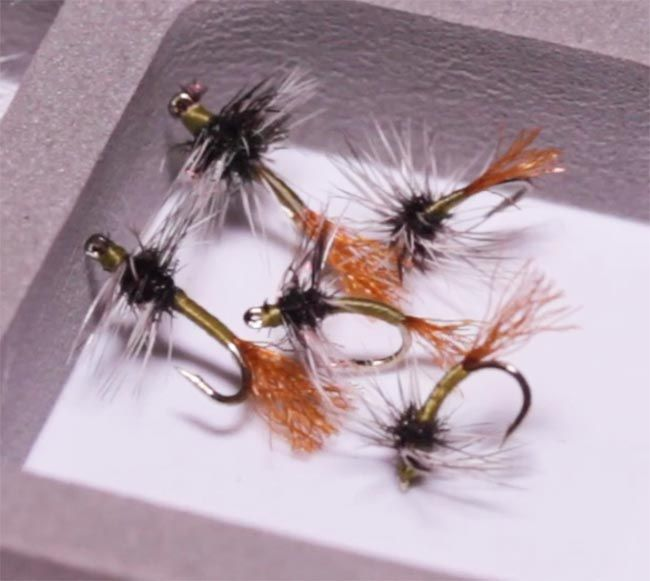 Video  How to Tie the Griffith  39 s Gnat Emerger   Orvis News