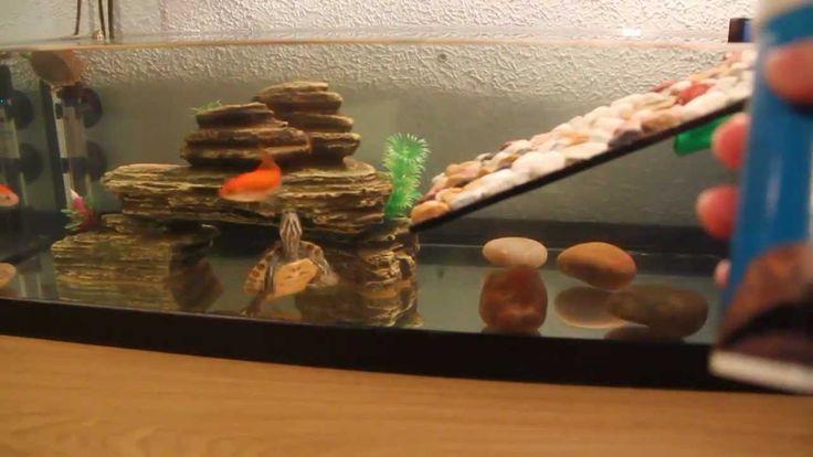 peceras para tortugas