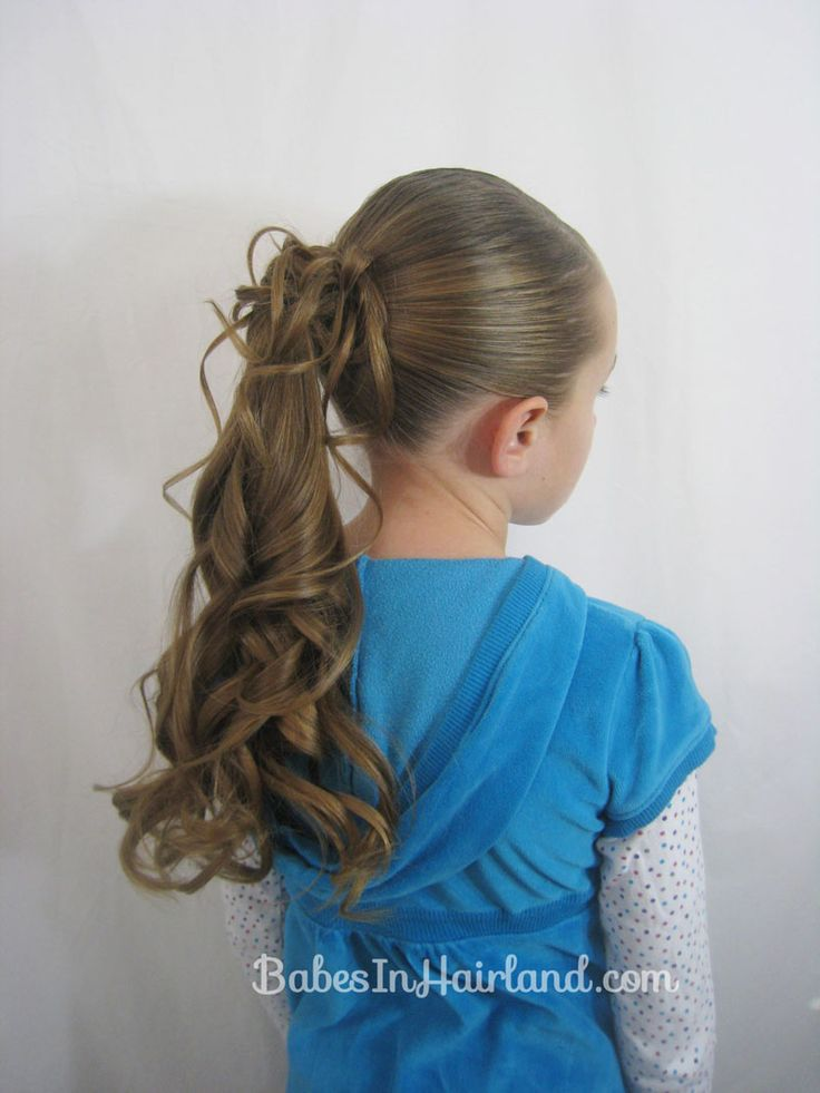 Dressed Up Ponytail from Babes In Hairland