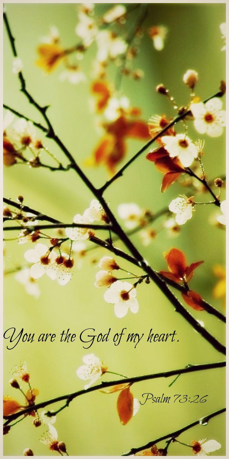 Mi roca y mi corazón desfallecen; más la roca de mi corazón y mi porción es Dios para siempre. Salmo 73:26