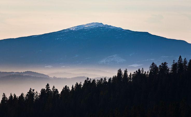 Babia Góra from Bukowina Waksmundzka
