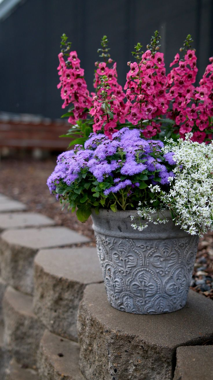 Three plants is all you need to quickly create a bright and sunny combination for your home. Here we use Angelface Pink Angelonia, Artist Blue Ageratum and Diamond Delight Euphorbia. But be creative, pick plants you love and get busy playing in the dirt!