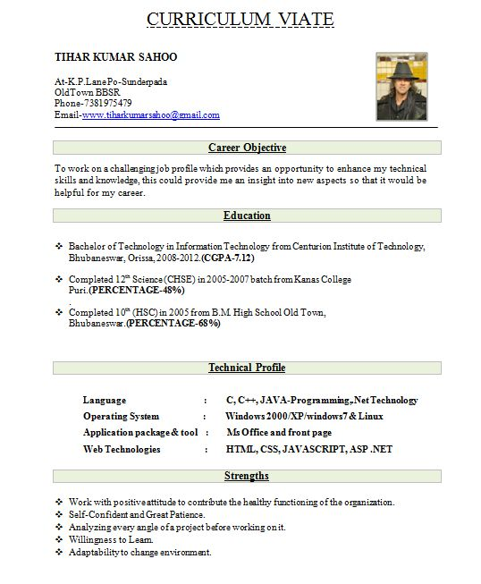 Sample Resume Format For Freshers  PetitComingoutpolyCo