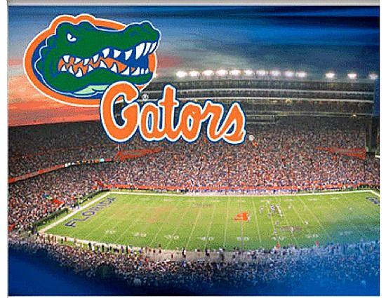 Florida Gators Football Stadium | University of Florida Gators Collegiate Football Stadium Poster Print