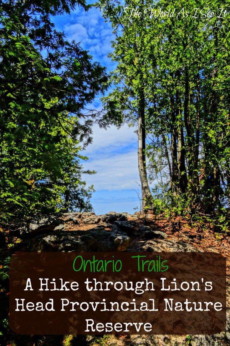 Hiking Lion's Head