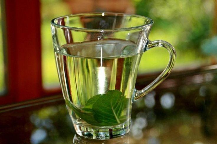 Remedios caseros con hierbabuena para la gastritis