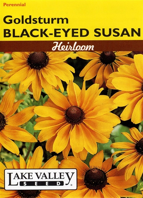 Black-Eyed Susan 'Goldsturm' Cheery yellow blossoms mean summertime in its native prairie habitat. Very hardy and easy to grow from a scattering of seeds. lakevalleyseed.com: Native Prairie, Very Hardy, Heirloom Flowers, Black Ey Susan, Cheeri Yellow, Yellow Blossoms, Susan Goldsturm, Prairie Habitats