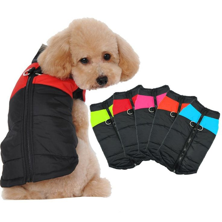 Get your dog ready for winter early with a padded dog jacket from The Pet habitat Store!