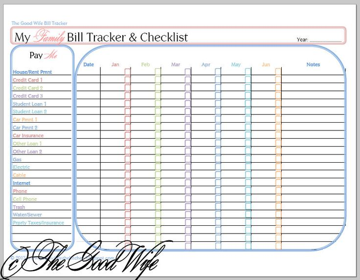 the good wife  new budget worksheet