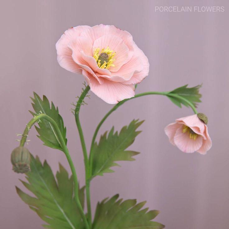 Porcelain poppy. Details. Hight firing . #porcelain #porcelainflowers #ceramics #ceramic #flowers…»