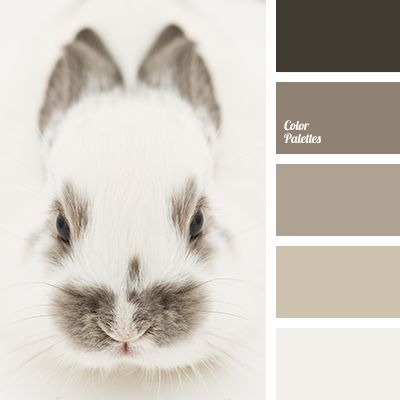 Now how could you possibly not love this colour combo, when it's example is this oh so cute bunny?