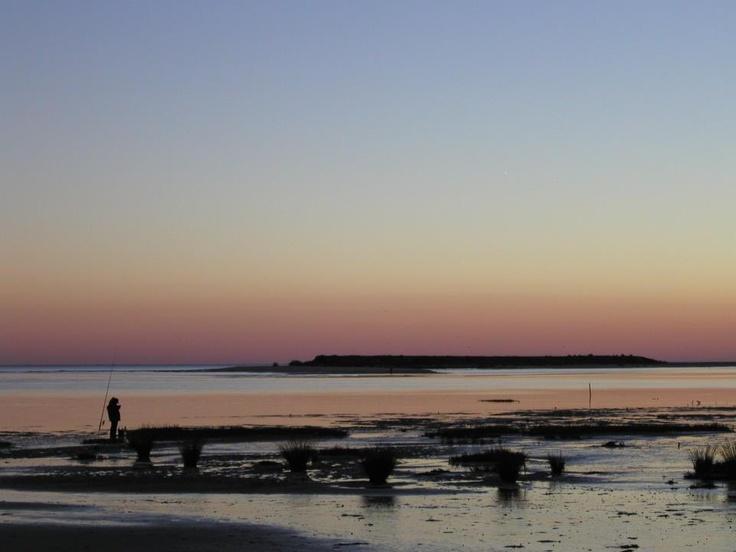 Ria Formosa, Olhão, Algarve