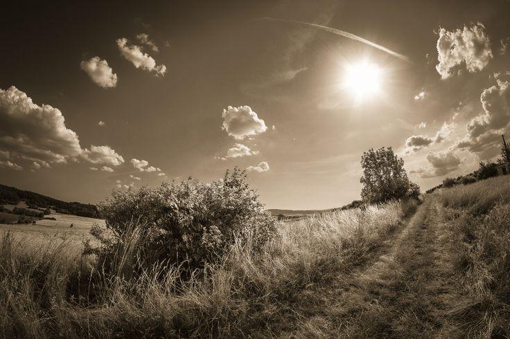 https://flic.kr/p/yGdTDw | Letní slunce | Šumava, Fisheye