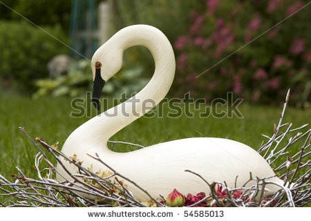 1000 Images About A Wooden Swan On Pinterest