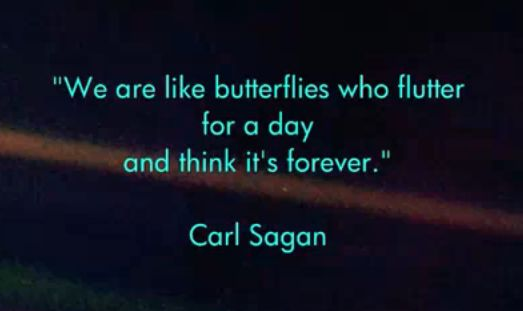 Google Image Result for http://www.brainpickings.org/wp-content/uploads/2009/11/sagan.png
