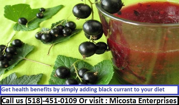 Black currant juiceis a nice way to vary one's diet and to have an alternative to other beverages.  https://www.emicosta.com/blog/get-health-benefits-by-simply-adding-black-currant-to-your-diet/