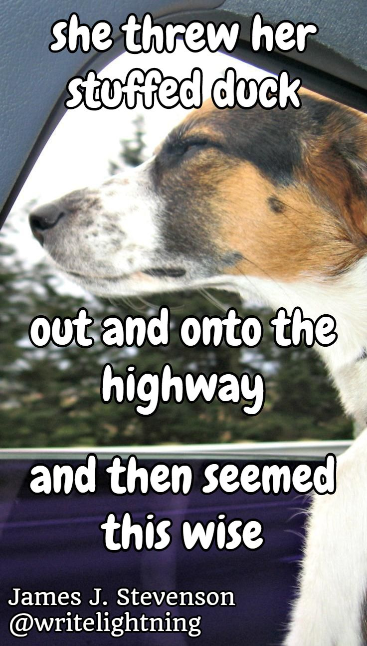 Cute beagle haiku quotes. Poetry and photo by James J. Stevenson. For more: http://writelightning.tumblr.com/ and https://twitter.com/writelightning