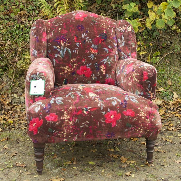 Chocolate Bird Armchair