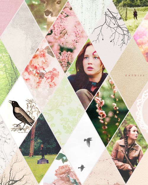 Great way to do a theme. Each diamond gets a part of it. Hunger Games by http://aguamentea.tumblr.com/post/30409259636