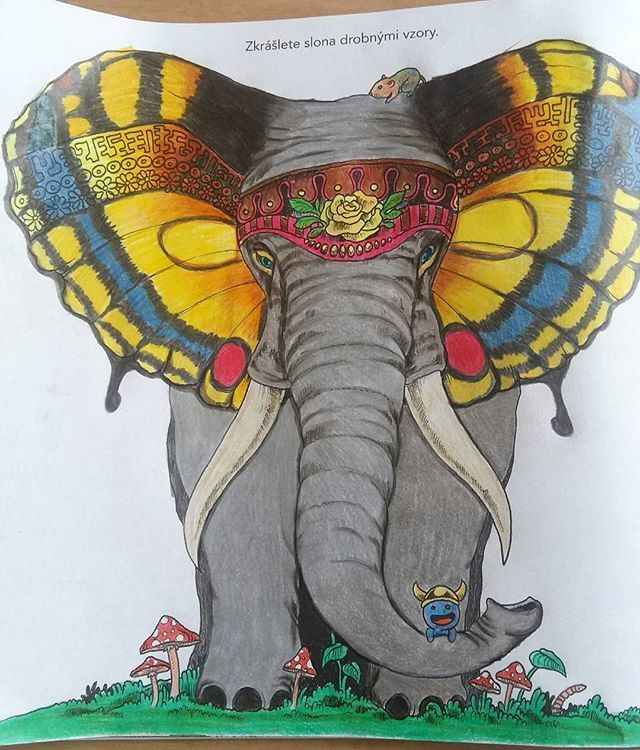 Time To Animorphia Promenyzvirat Animorphiacolouringbook Coloring BooksAdult