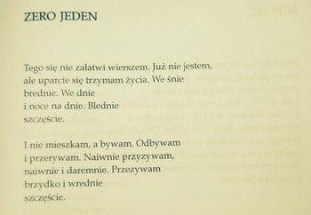 Nowy Świetlicki, Jeden.