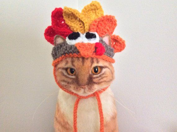Turkey Hat For Cats Thanksgiving Hats For Cats Cat Hat Cat Costumes Pet Costumes Cats Cat Photo Prop Small Dog H Hat For Cat Hats For Cats Cat Costumes