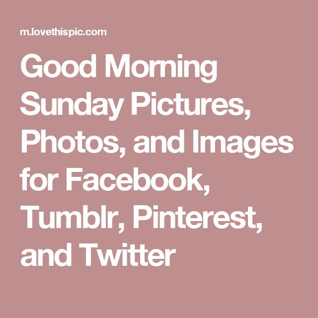 Good Morning Sunday Pictures, Photos, and Images for Facebook, Tumblr, Pinterest, and Twitter