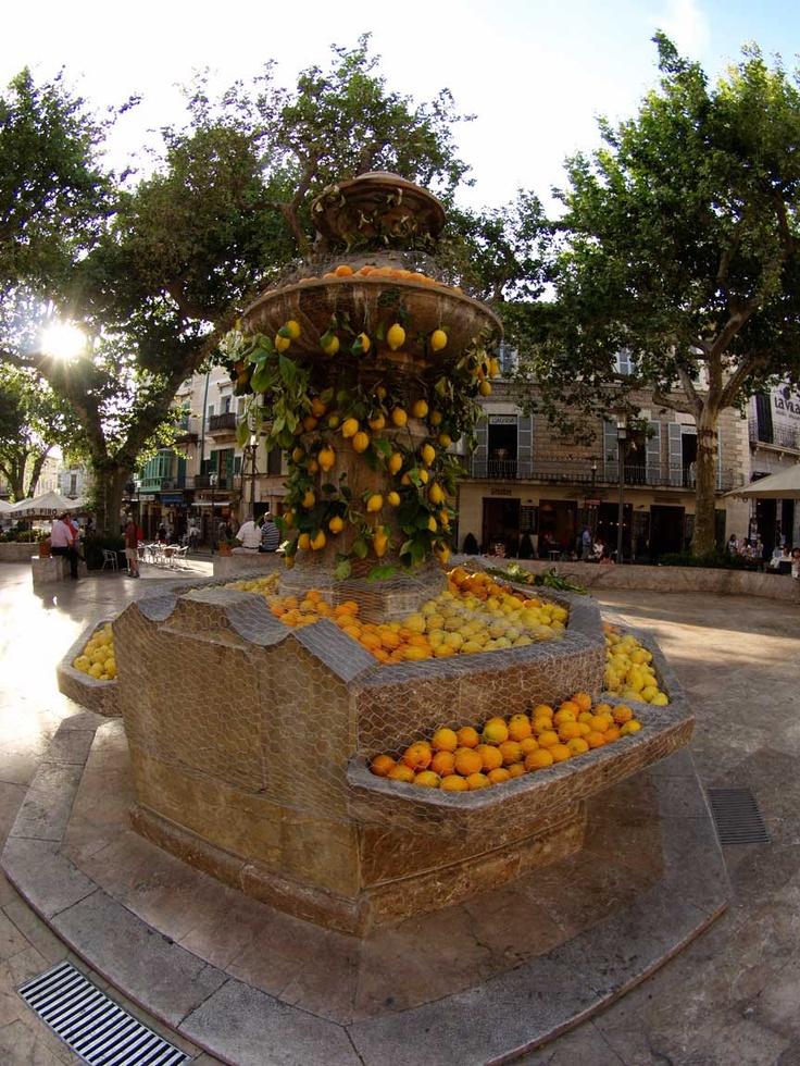 Soller Brollador de plaça per la Fira de sa Taronja