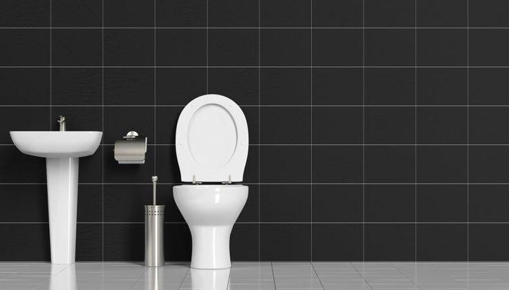 https://www.haushaltstipps.net/wp-content/uploads/toilette-reinigen