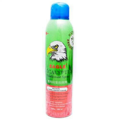 Eagle Eucalyptus spray
