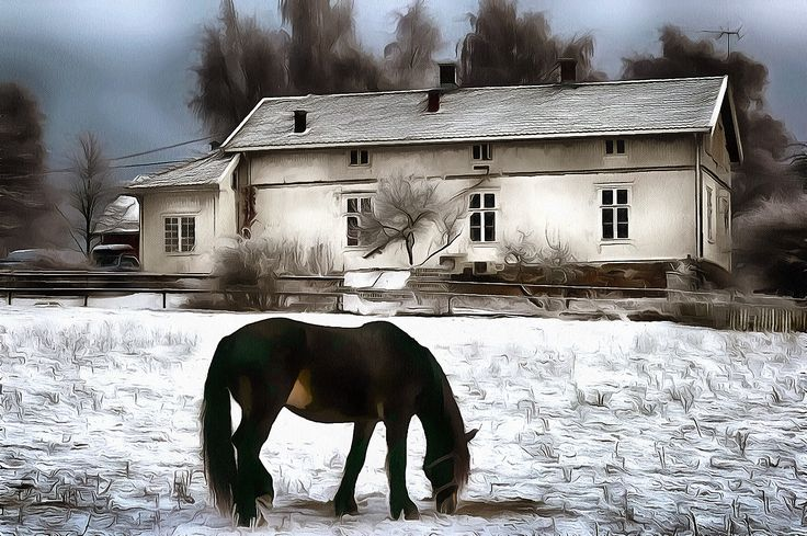 Horse and House. Holmlia, Oslo, Norway.