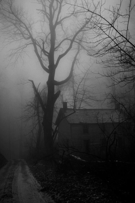 Spooky scary rural area on a dark foggy night hope the for Best classic house tracks