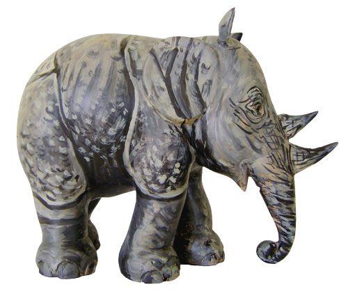 Rhino  Emmen
