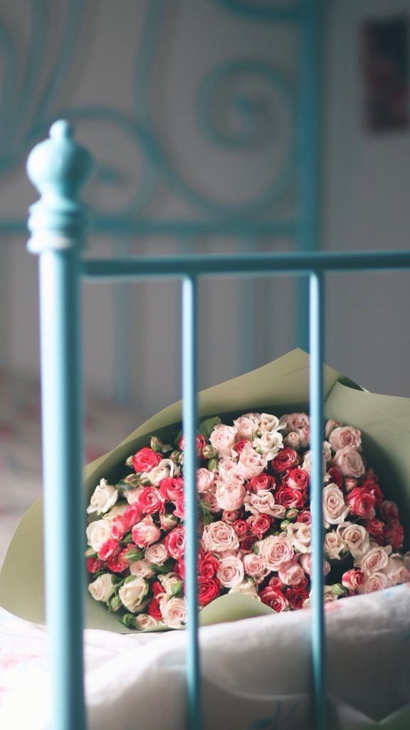 Pin On زهور ملونه