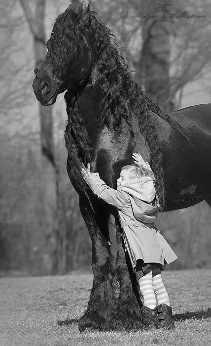 Little girl and her big Friesian