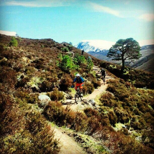 Cairngorm National Park Mountain Biking!