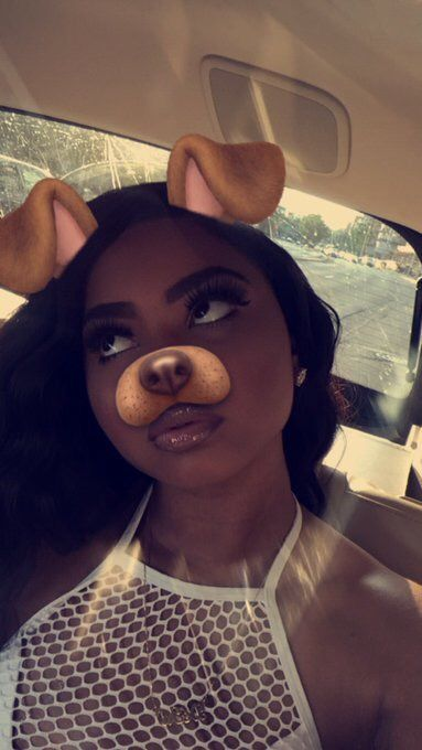 148 Best Images About Dog Filter On Pinterest Follow Me