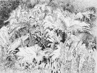 "Saatchi Art Artist Maria Westra; Drawing, ""GARDEN 3"" #art  https://www.youtube.com/watch?v=ksLWULWKoM4"