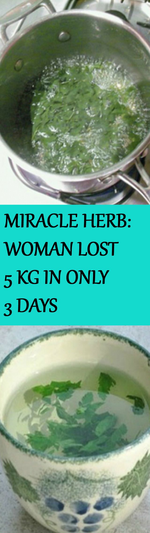 A MIRACLE HERB: WOMAN WAS 72 KG ON THURSDAY, AND WENT DOWN TO 67 KG BY SATURDAY